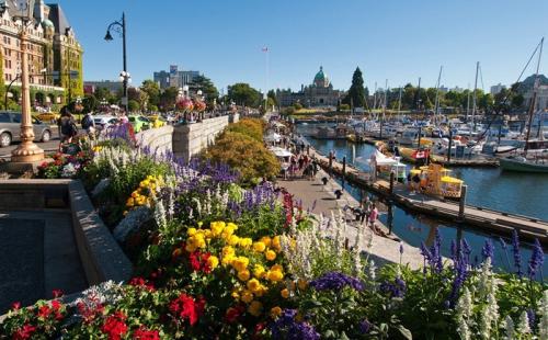 2020加拿大投资移民政策新动向详细解读