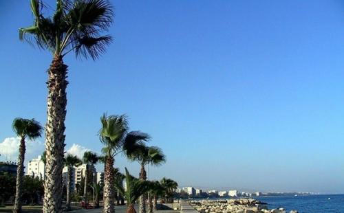 拥有塞浦路斯欧盟护照的子女,路更宽!