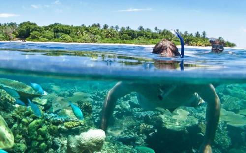 移民斐济备受青睐,因为它可作为移民澳洲新西兰的跳板