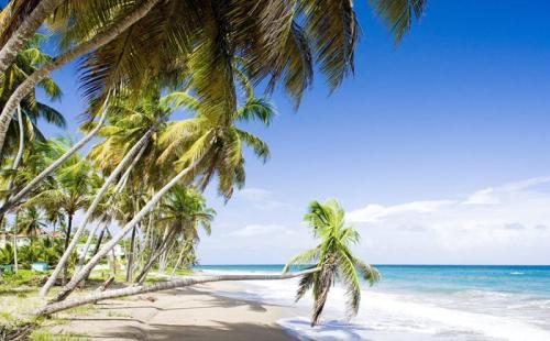格林纳达最新报表:护照签发增加64%,CIP收入增长33%
