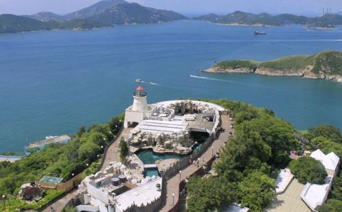 香港离岸公司账户被关户,政策层面的原因是什么?