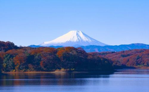 是什么引发日本民宿投资热潮?