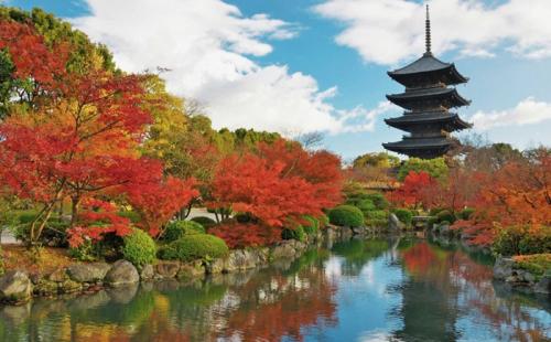 日本放宽留学生居留政策:毕业后年赚300万日元获在留资格