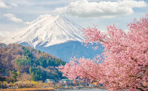 移民日本合适吗?日本经营管理签证有哪些优势?