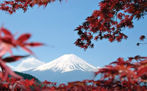 """日本政府发起""""出发运动"""",大力恢复本国旅游业!"""