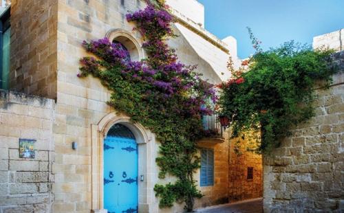 马耳他为何广受移民人士的青睐?