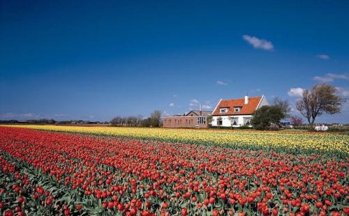 为什么选择瑞典?瑞典移民福利有哪些?
