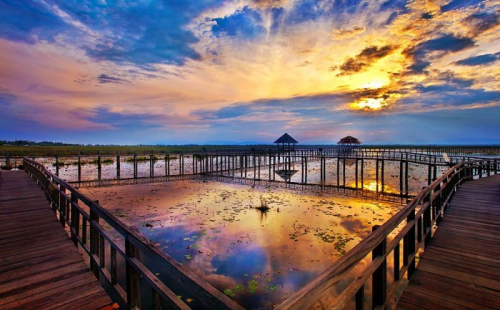疫情下的泰国,除了旅游业还有哪些行业受影响?