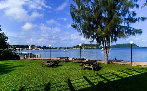 移民到瓦努阿图的人的真实生活感受