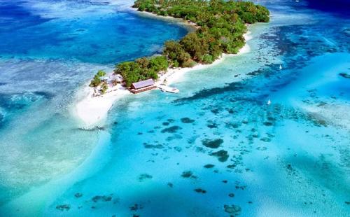 英联邦最便宜的小国护照:瓦努阿图护照
