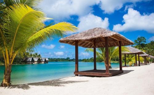 入读国际学校,瓦努阿图移民护照绿卡成为首选