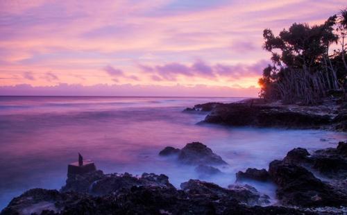 移民瓦努阿图,共享5大特权