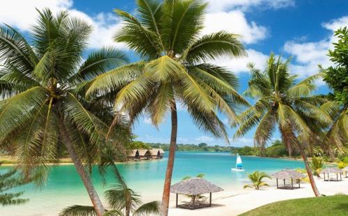 这四类人一定要办理瓦努阿图护照