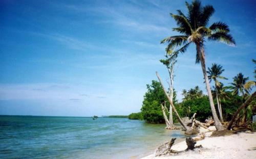 快速移民瓦努阿图,到底需要满足什么条件